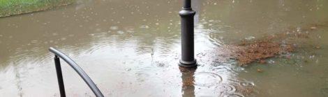 Interrogazione 369/2018 Giardini di Piazza Venezia: problema allagamenti