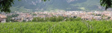 Interrogazione: Dati aggiornati su agricoltura biologica nel Comune di Trento