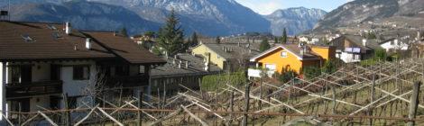 Interrogazione: superfici agricole di proprietà del Comune di Trento.